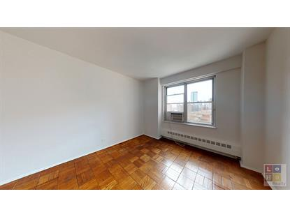455 FDR Drive New York, NY MLS# RPLU-624120197424