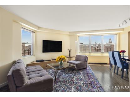 251 East 32nd Street New York, NY MLS# RPLU-63220145319
