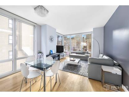 247 West 46th Street New York, NY MLS# RPLU-63220174765