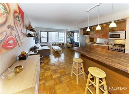 245 East 24th Street New York, NY MLS# RPLU-63220220485