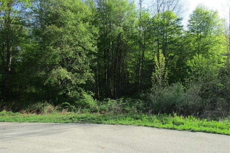 Lot 1 Valley Vista Drive, Lowell, MI 49331