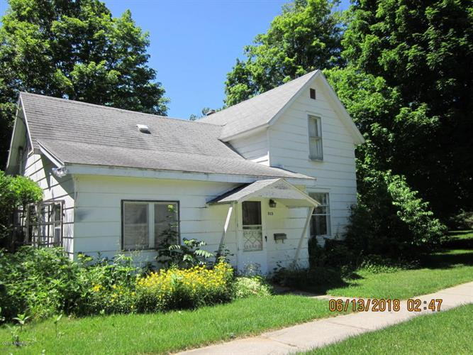 313 N Brown Street, Paw Paw, MI 49079