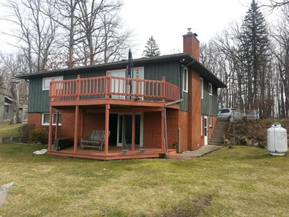6380 Oak Ridge Drive Jonesville, MI MLS# 16010377