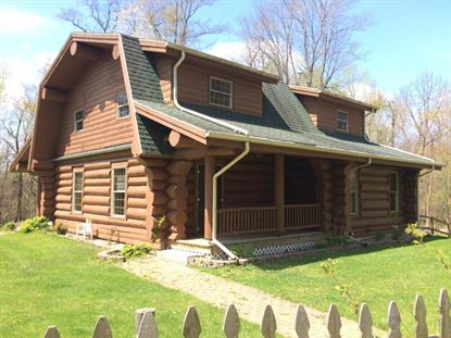 2456 E CHICAGO Road Jonesville, MI MLS# 16019257