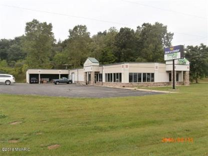 480 Olds Street Jonesville, MI MLS# 16042732