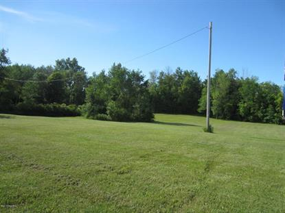 1569 N Newaygo Road  Bailey, MI MLS# 17007633