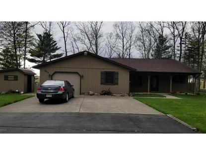 6474 East Carrigan Drive, Newaygo, MI