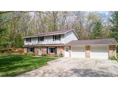 3390 Bass Lake Road, Pierson, MI