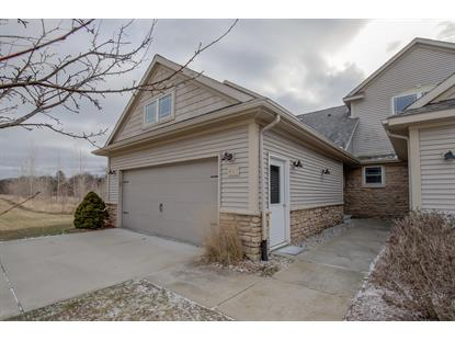 497 Morton Avenue Belding, MI MLS# 19001633