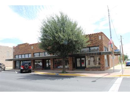 206 N Main St  Fort Stockton, TX MLS# 50016155
