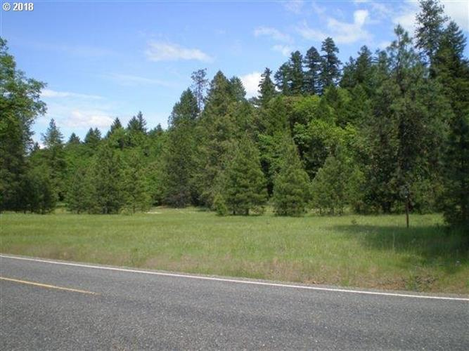 0 DICK GEORGE RD, Cave Junction, OR 97523 - Image 1