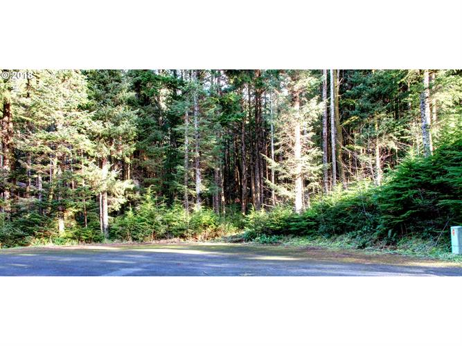 Clatsop LN, Arch Cape, OR 97102