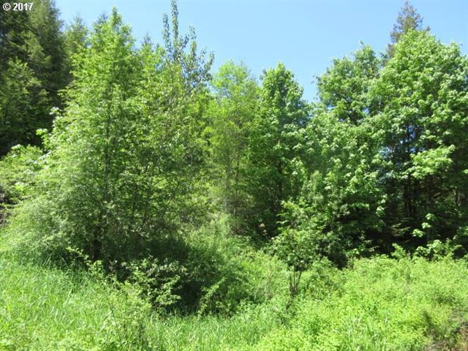 Timber (tax lot 204) RD, Vernonia, OR 97064