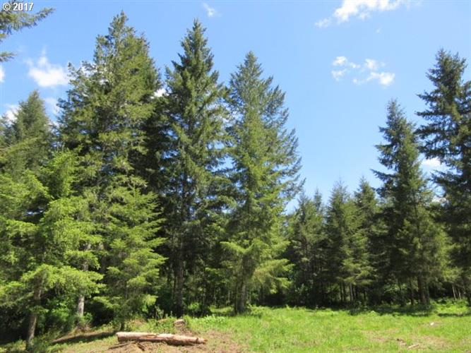 Timber (tax lot 205) RD, Vernonia, OR 97064