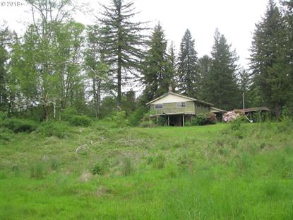 18000 CEDAR CREEK RD, Hebo, OR