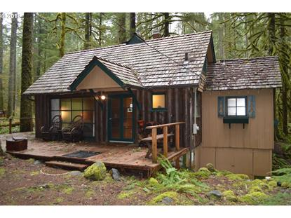 28111 E ROAD 20D, Rhododendron, OR