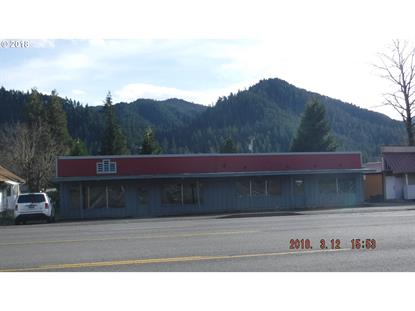 47646 Hwy 58 ST, Oakridge, OR