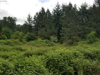 34870 SPILLWAY lot1 RD, Cottage Grove, OR