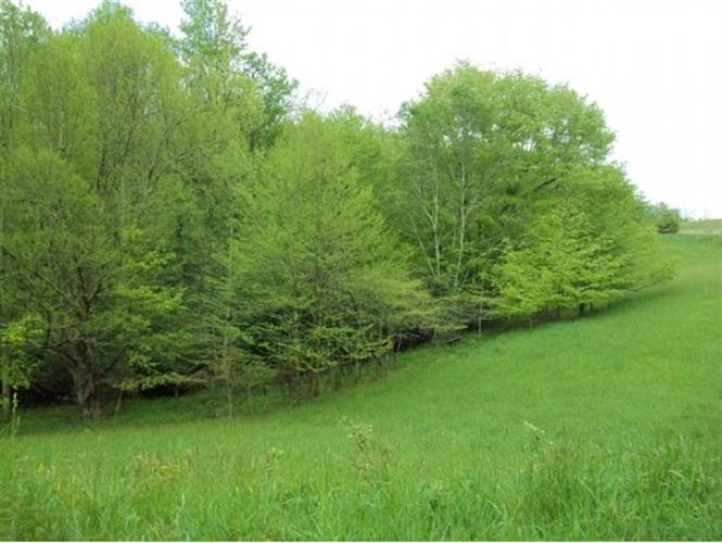 TBD Whitetop Gap Road (Lot 1), Whitetop, VA 24292