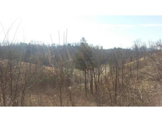 Lot 42 Stone Bridge Drive, Dandridge, TN 37725