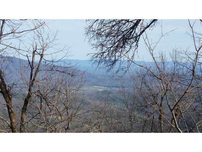 TBD Osborne Knob Rd, Little Switzerland, NC 28749 - Image 1