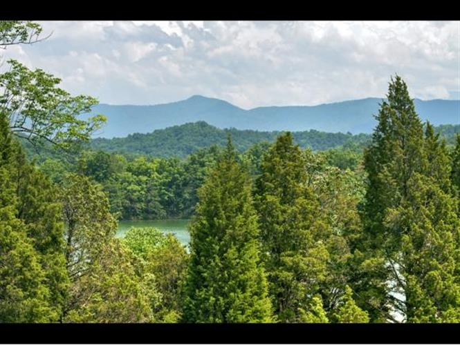 3903 Island View Rd, Sevierville, TN 37876