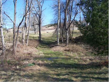 Lot 12 Dug Hill , Mountain City, TN