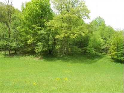 TBD Whitetop Gap Road (Lot 4) , Whitetop, VA