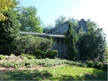 402 Candy Creek Private Drive , Blountville, TN