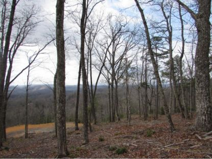 TBD TBD  Clintwood, VA MLS# 390429