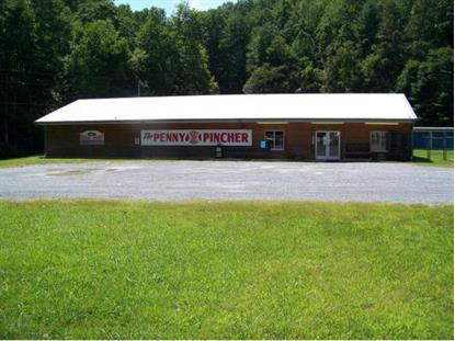 7050 Highway 19-E , Roan Mountain, TN