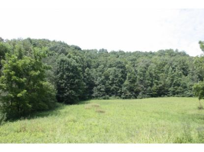 TBD Hunters East Valley Dungannon, VA MLS# 402891