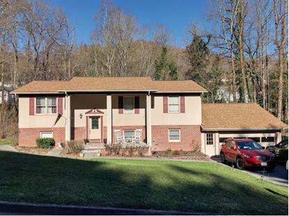 420 Chestnut St.  Norton, VA MLS# 403294