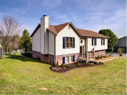 605 Steeplechase Dr , Johnson City, TN