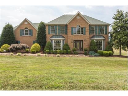 19170 Triple Crown Drive , Abingdon, VA