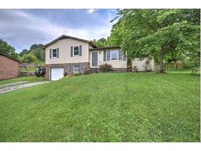 383 Browders Chapel  Hiltons, VA MLS# 407241