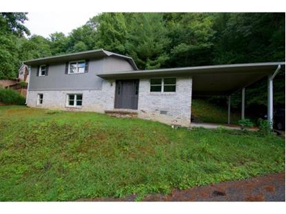132 Cold Springs  Appalachia, VA MLS# 411541
