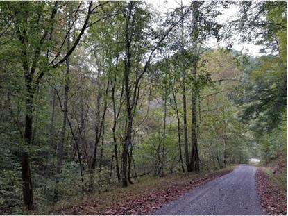 TBD DAN FISHER HOLLOW RD  Blackwater, VA MLS# 413902