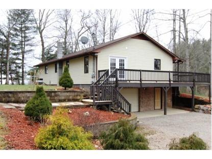 290 MINK HILLS ROAD  Mountain City, TN MLS# 416587