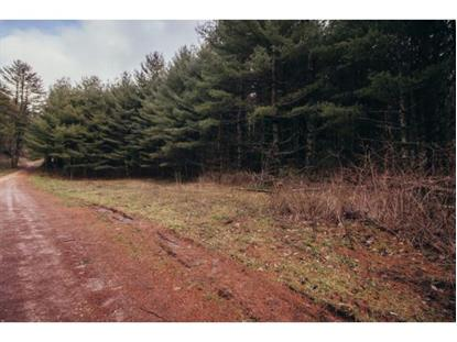 TBD Hawkins Road  Laurel Bloomery, TN MLS# 416680