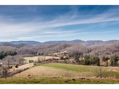 8369 Blackwell Chapel Road Meadowview, VA MLS# 418866