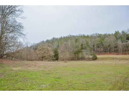 Tbd Hunters East Vly Road Dungannon, VA MLS# 9904345