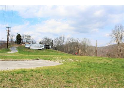 184 Partridge Drive Duffield, VA MLS# 9906676