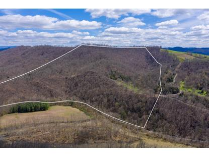 2184 Chestnut Ridge Road Dungannon, VA MLS# 9906697