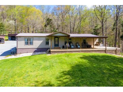 16356 Little Sorrel Road Hiltons, VA MLS# 9906888