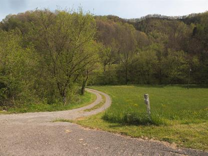 1125 Robinette Valley Road Duffield, VA MLS# 9907062