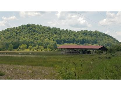 00 State Route 70  Blackwater, VA MLS# 9908037