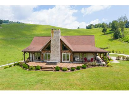 2706 Big Stoney Creek Road Dungannon, VA MLS# 9908945