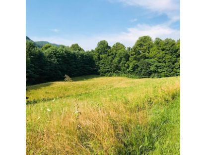 Tbd Hillcrest Farms Road Big Stone Gap, VA MLS# 9910568