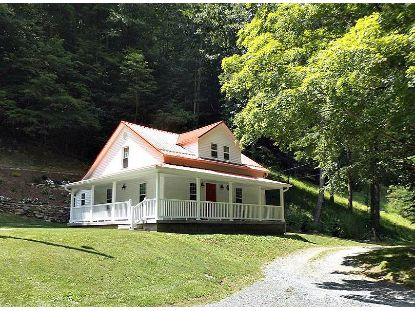 114 Clarktown Road Roan Mountain, TN MLS# 9910617